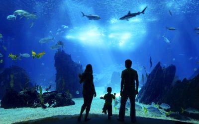 Tourism infrastructure renaissance for Cairns