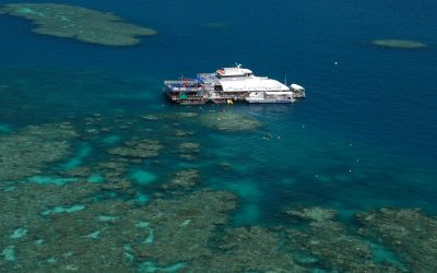 Reef Magic's Education Manager to present at international congress in Canada